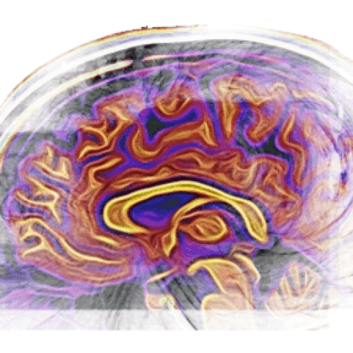 cropped-Brain-website-logo.png