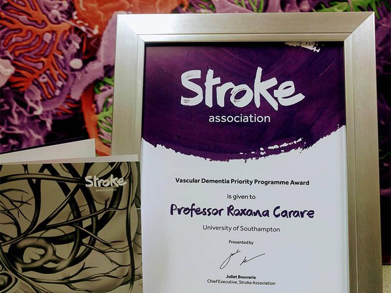 Roxana Carare awarded Vascular Dementia Priority Programme Award.